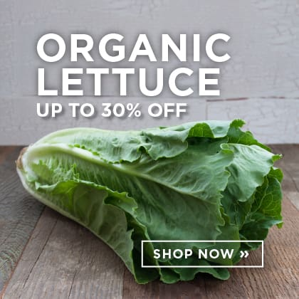 Organic Lettuce up to 30% Off