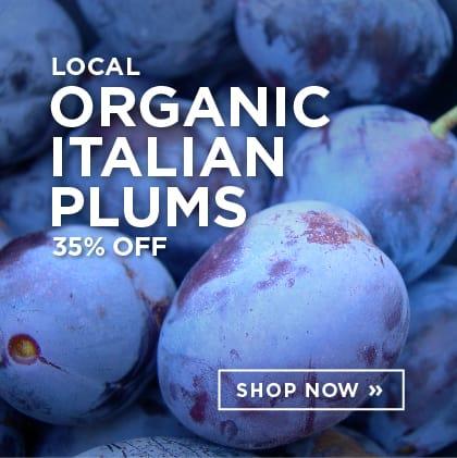 Local Organic Italian Plums 35% Off