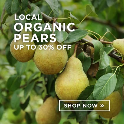 Local Organic Pears Up to 30% Off
