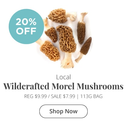 Local Wildcrafted Morel Mushrooms 20% Off