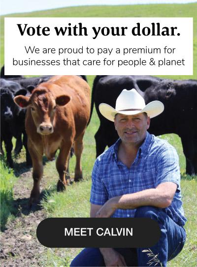 Sustainability- Meet Calvin