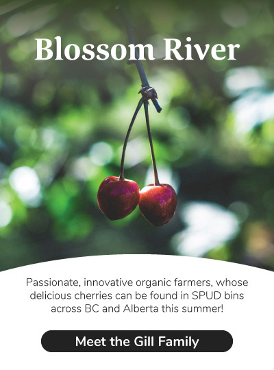 Meet Blossom River Organics