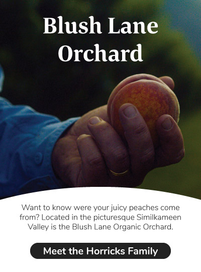 Meet the Horricks Family of Blush Lane Orchard