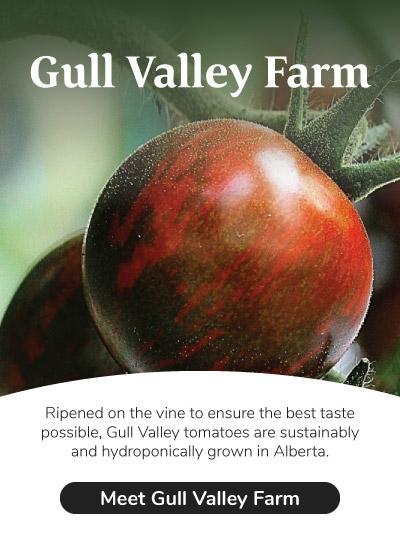 Meet Gull Valley Farm