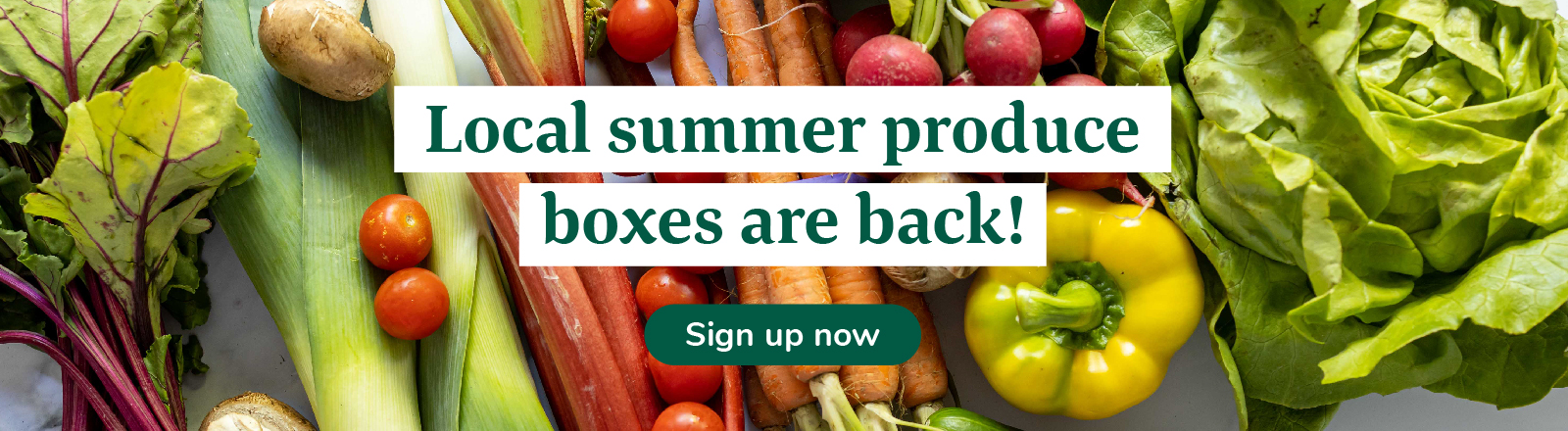 Sign up now for summer produce boxes