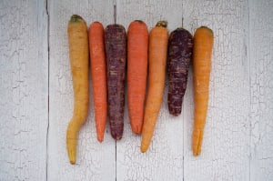 Organic Carrots, Rainbow - Bunched- Code#: PR202079NCO