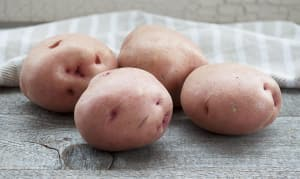 Local Organic Potatoes, Imperfect - Red- Code#: PR202176LCO