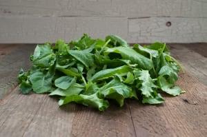 Local Organic Kale, Baby - Island Grown!- Code#: PR100138LCO