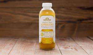 Organic Kombucha, Citrus- Code#: DR111