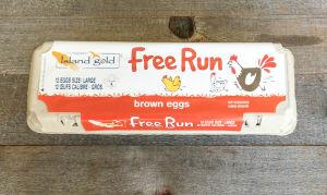 Free Run Large Brown Eggs- Code#: EG0131