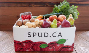 Organic Best of BC Produce Selection- Code#: KIT0076