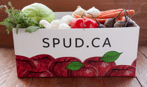 Organic Roasting Vegetables Box- Code#: KIT007