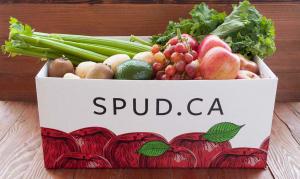 Organic Farm Box - Small- Code#: KIT009