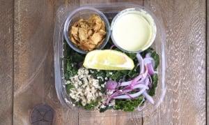 Black Kale Ceasar Salad- Code#: PM8016