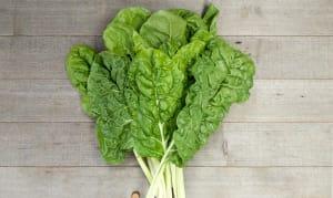 Local Organic Chard, Green - Island Grown!- Code#: PR136818LCO