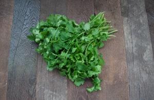 Local Organic Cilantro - BC Grown!- Code#: PR100080LCO