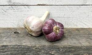 Local Organic Garlic, Purple- Code#: PR134163LCO