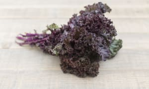 Local Organic Kale, Red- Code#: PR100139LCO