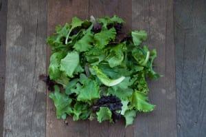 Local Organic Salad Mix - Island Grown!- Code#: PR100250LCO