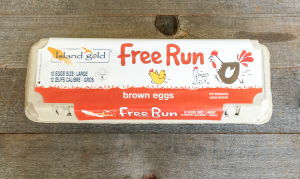 Free Run Large Brown Eggs- Code#: EG0131