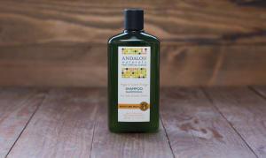 Argan & Orange Moisture Rich Shampoo- Code#: PC1103