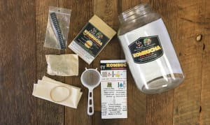 Kombucha Tea - DIY Brew Your Own- Code#: HH3172
