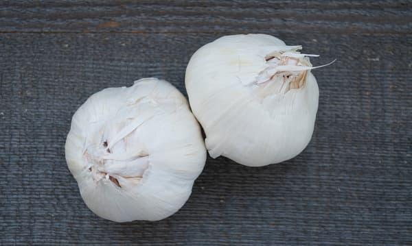 Organic Garlic - Purple