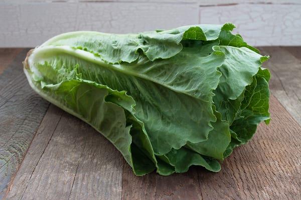 Organic Lettuce, Romaine