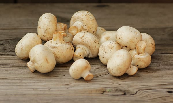 Organic Mushrooms, White - 226g