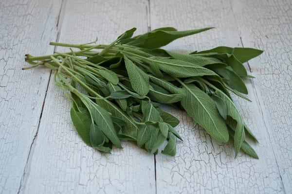 Organic Herbs, Sage