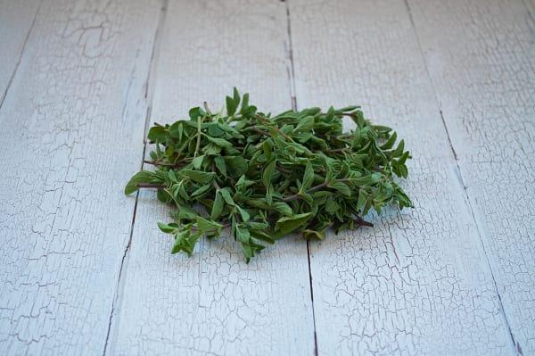 Local Organic Herbs, Oregano
