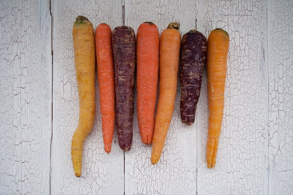 Local Organic Carrots, Mixed Colour