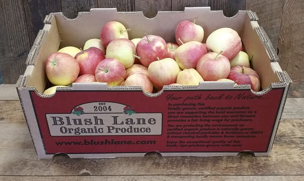 Organic Apples, Gala, Case - BC