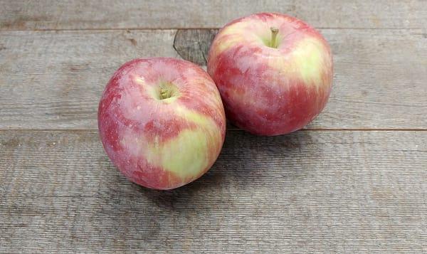 Local Organic Apples, Spartan