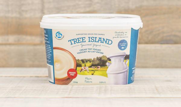 Plain Cream Top Non-Homogenized, Grass Fed Yogurt - 3.5% MF