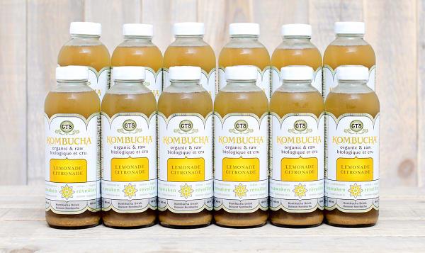 Organic Citrus Kombucha - CASE