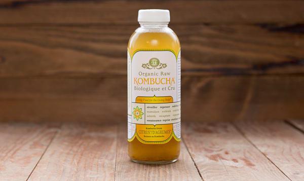 Organic Kombucha, Lemonade