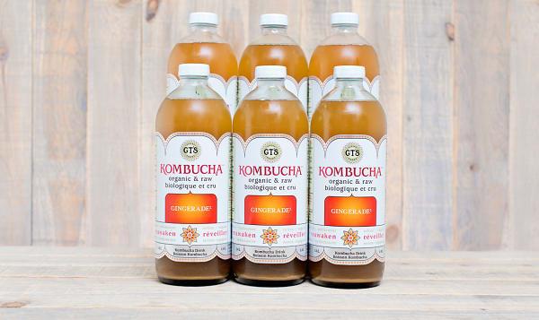 Organic Gingerade Kombucha - CASE