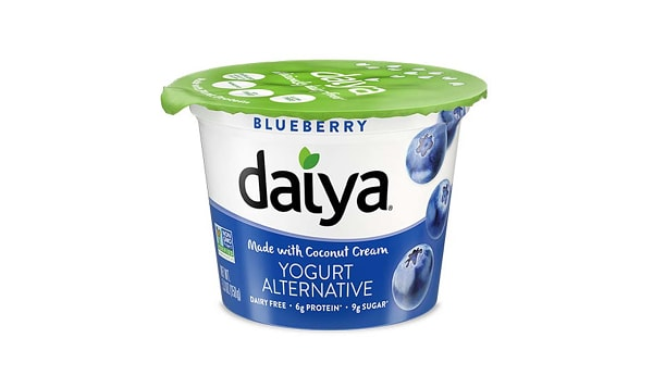 Blueberry Dairy-Free Yogurt