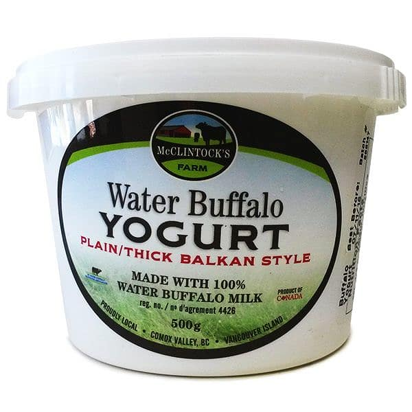 Water Buffalo Yogurt - Plain - Thick Balkan Style