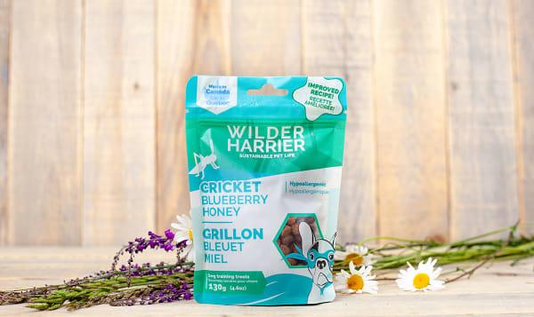 Blueberry Honey Cricket Dog Training Bites