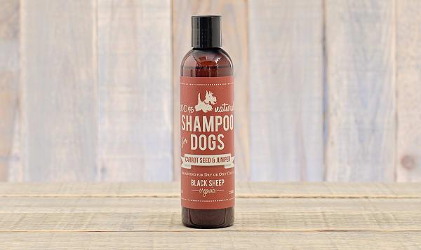 Carrot Seed & Juniper Dog Shampoo