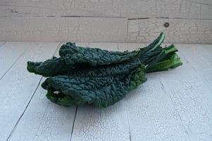 Organic Kale, Dino (Black)- Code#: PR100368NCO