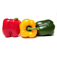 Organic Peppers, Stop Light Mix- Code#: KIT3024