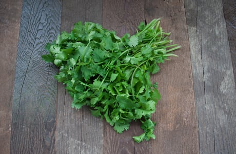Organic Cilantro - Local now!- Code#: PR100080LCO