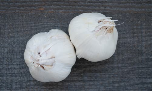 Local Organic Garlic - Russian Red- Code#: PR100104LPO