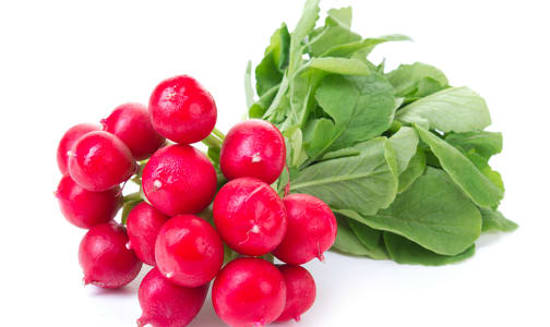 Local Organic Radishes - Bunched w/ tops- Code#: PR100241LCO