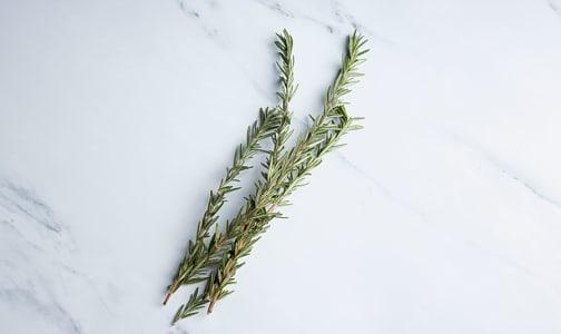 Organic Rosemary- Code#: PR100248NCO