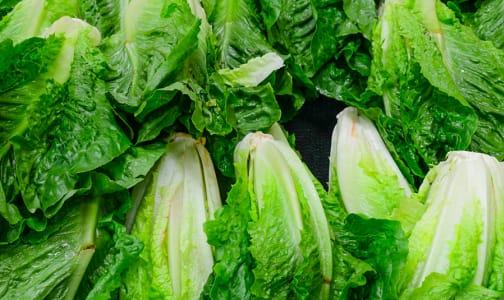 Organic Lettuce, Romaine - CASE- Code#: PR217214NCO