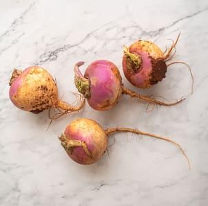 Local Turnips, Purple Top BC Grown- Code#: PR217257LPN